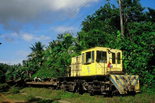 Demolition train of the banana transport railway, of the Bocas Fruit Company between Almirante and Changuinola with locomotive 817 (GE 32 tons).